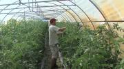 La série de la rédaction :  Le jardinage collaboratif épisode 3