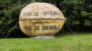 Agora - Les noix de Grenoble