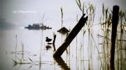 Découvir le Lac d'Aiguebelette