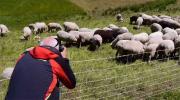 Le JT Montagne - Photographie au Pays du Mont-Blanc