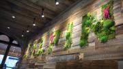 M. Pokora ouvre un restaurant à Annecy