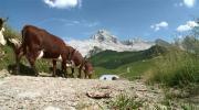 La place du village : Rencontres au Col des Annes au Grand Bornand