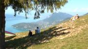 8 Infos - L'été indien dans les Pays de Savoie