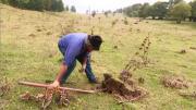 La place du village : Traditions sur le Plateau de Retord (Haut Bugey)