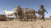 Solidarités - Les puits du désert (Partie 2)