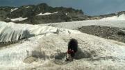La place du village : Le Glacier de Bellecôte à La Plagne